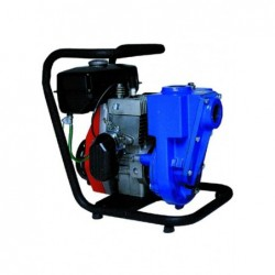 Motopompe Autoadescanti 80/1A